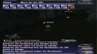 FFXI NM Saga 094 Drexerion the Condemned vs BST solo High lvl Full Battle