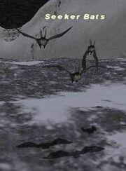 Seeker-Bats