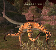 Jasconius