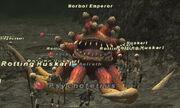 Morbol Emperor