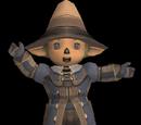 Wizard's Attire Set