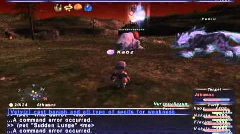 FFXI NM Saga 212 Athamas NM (Full Battle)