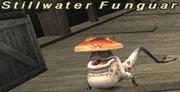 Stillwater Funguar