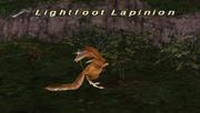 Lightfoot Lapinion