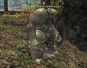 Troll Shieldbearer