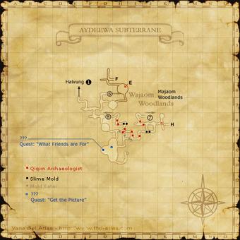 Black Mage Solo Guide Ffxiclopedia