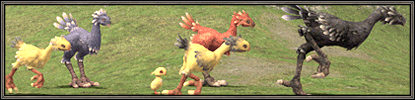 Chocobo Raising Changes and Additions (12-07-2006)