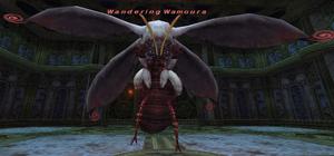 Wandering Wamoura