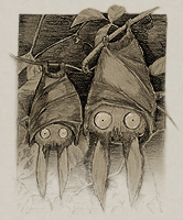 Bat's-eye