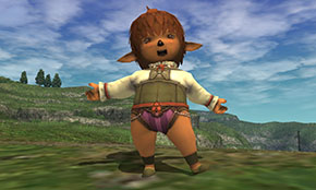 Destination Vana'Diel Screenshot Example