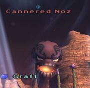 Cannered Noz