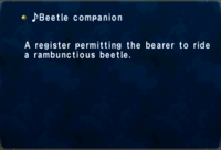 ♪Beetle companion