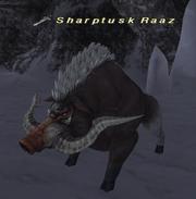 Sharptusk Raaz