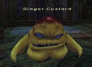Ginger Custard