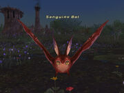 Sanguine bat