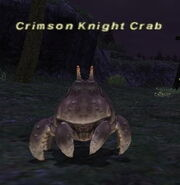 Crimson Knight Crab