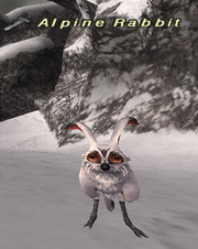 Alpine Rabbit
