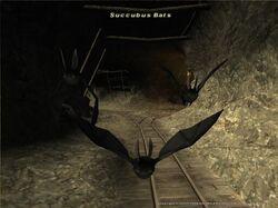 Succubus Bats