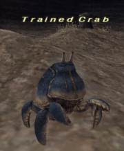 Trained Crab