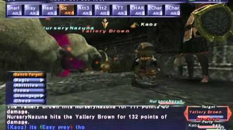 FFXI NM Saga 293 Yallery Brown NM Full Battle