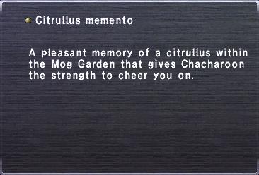 Citrullus memento