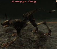 VampyrDog