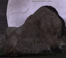 Rambunctious Rex