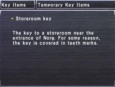 Storeroom Key