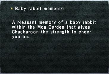 Baby rabbit memento