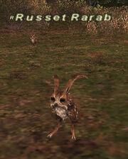 Russet Rarab