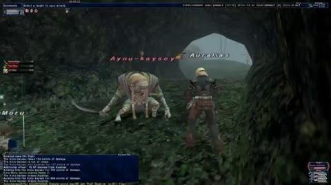 Aynu kaysey - ToAU NMs - Final Fantasy XI
