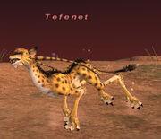 Tefenet