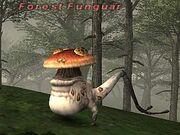 Forest-Funguar