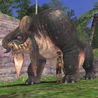 Rearing-buffalo