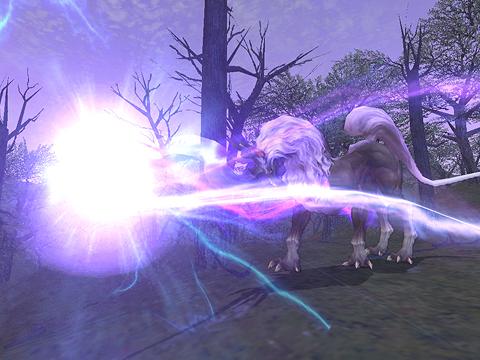 Apparition d'une mystérieuse licorne noire! (06.06.2008)-1