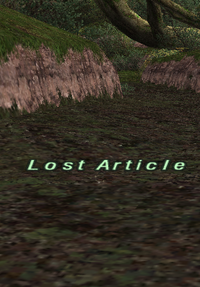 Lost Article