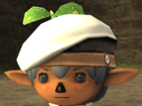 Sprout Beret