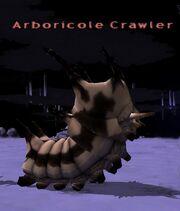 Arboricole Crawler