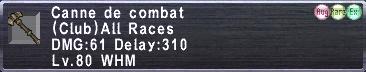 Canne de Combat