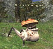 Grassfunguar