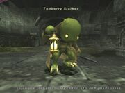 Tonberry Stalker
