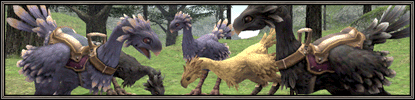Chocobo Raising Now Available!