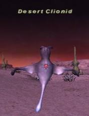 Desert Clionid