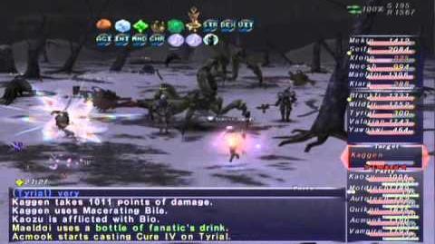 FFXI NM Saga 382 Kaggen (Voidwatch NM) Full Battle