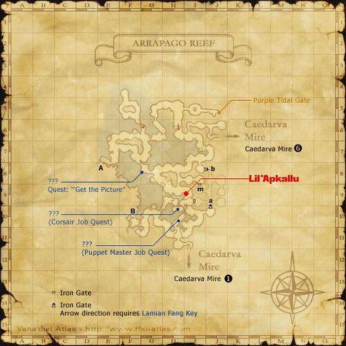 Lil Apkallu Map