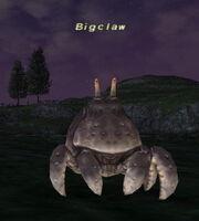 Bigclaw
