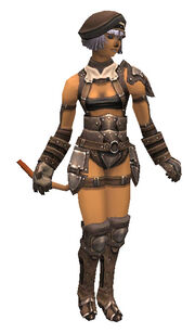 Bronze Armor Set