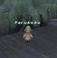 Parukoko