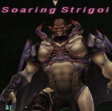 Soaring Strigoi