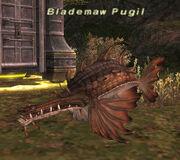 Blademaw Pugil